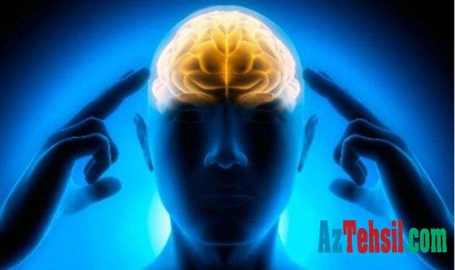 Beyin niyə qocalır?