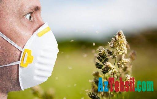 Allergiya niyə inkişaf edir? Allergiyanın simptomları və profilaktikası