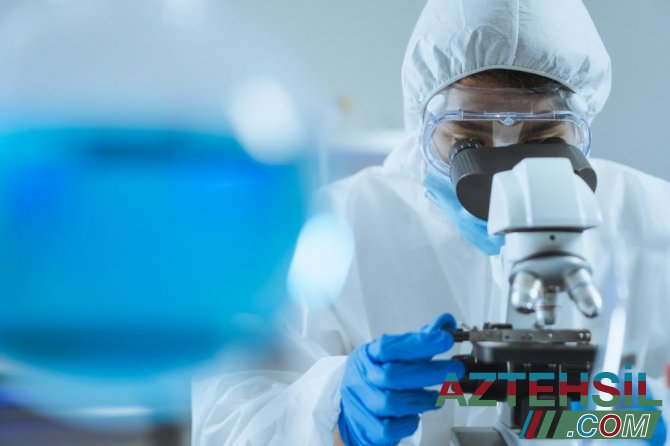 Koronavirusun yeni ştammının daşıyıcıları açıqlandı